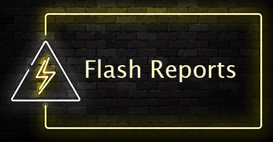 Flash Reports: Real-time Financial Reporting